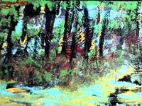 Fall Forest by Bo Jordan