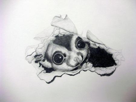 schroeder by Mayu Burr