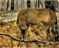 Deer by Anjana Jose