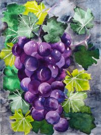 Grapes, painting by Judith E. Rosenstein